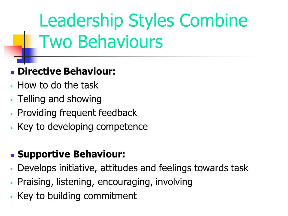 Leadership Styles Combine Two Behaviours