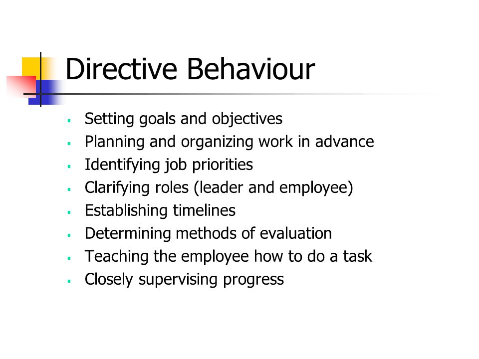 Directive Behaviour Setting goals and objectives