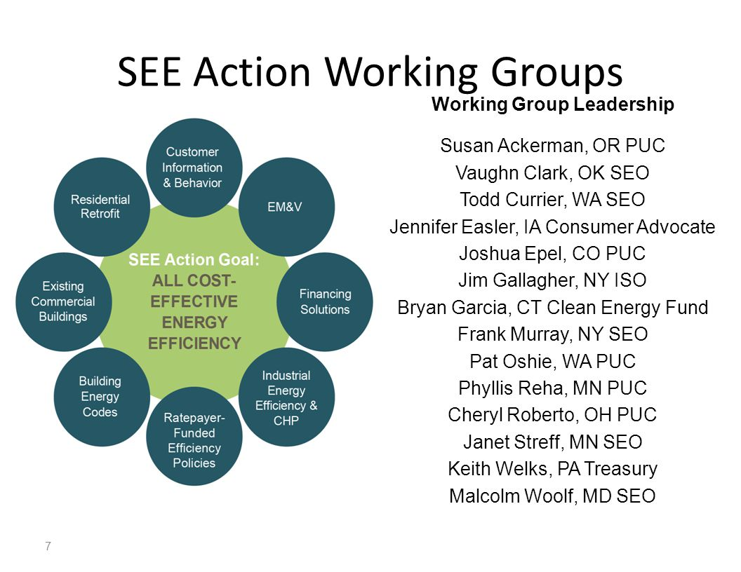 SEE Action Working Groups