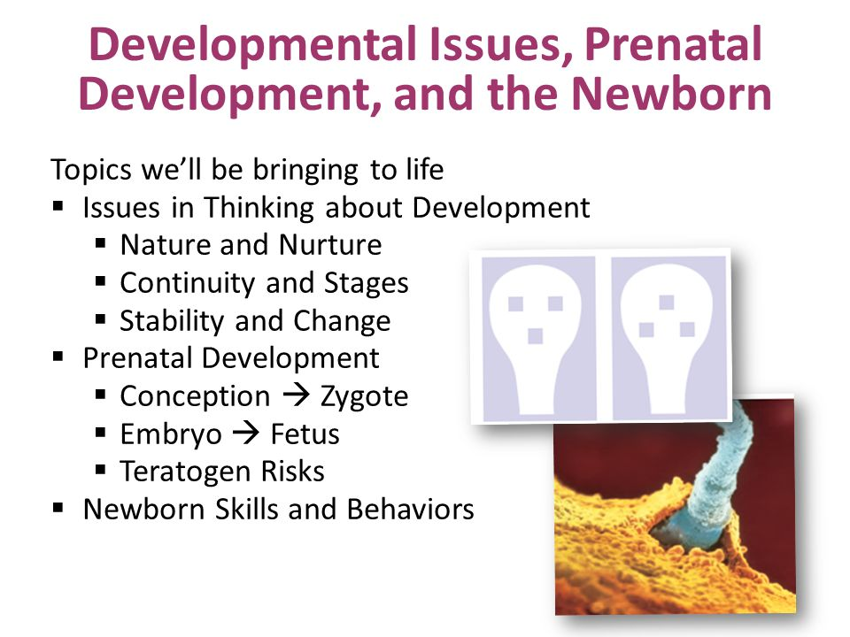 Developmental Issues, Prenatal Development, and the Newborn