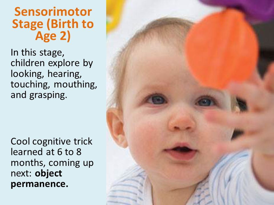 Sensorimotor Stage (Birth to Age 2)