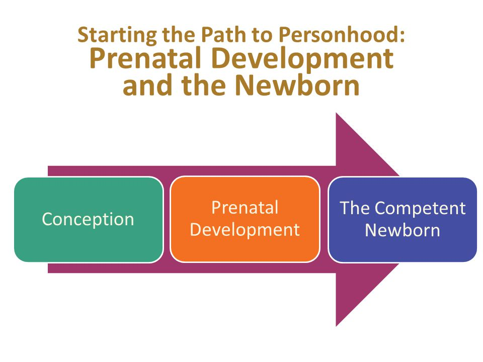 Starting the Path to Personhood: Prenatal Development and the Newborn