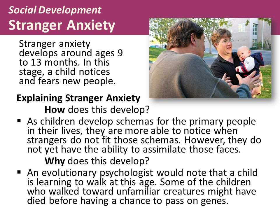 Social Development Stranger Anxiety