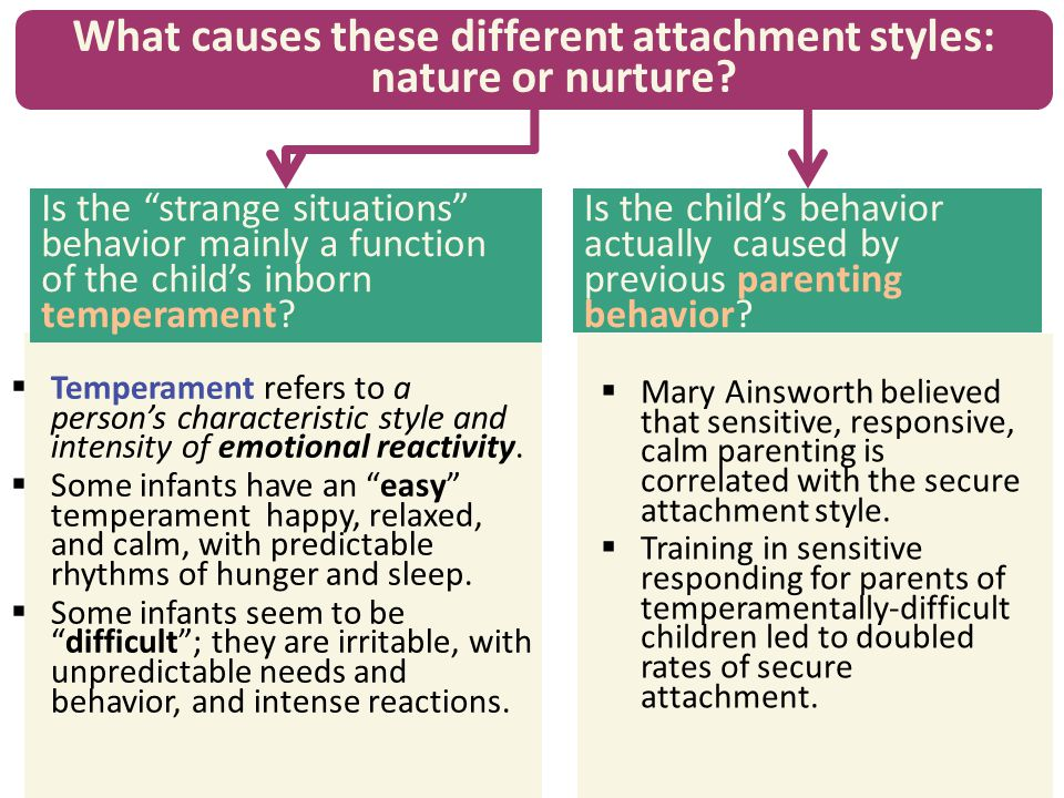 What causes these different attachment styles: nature or nurture