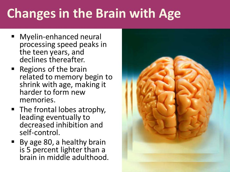 Changes in the Brain with Age