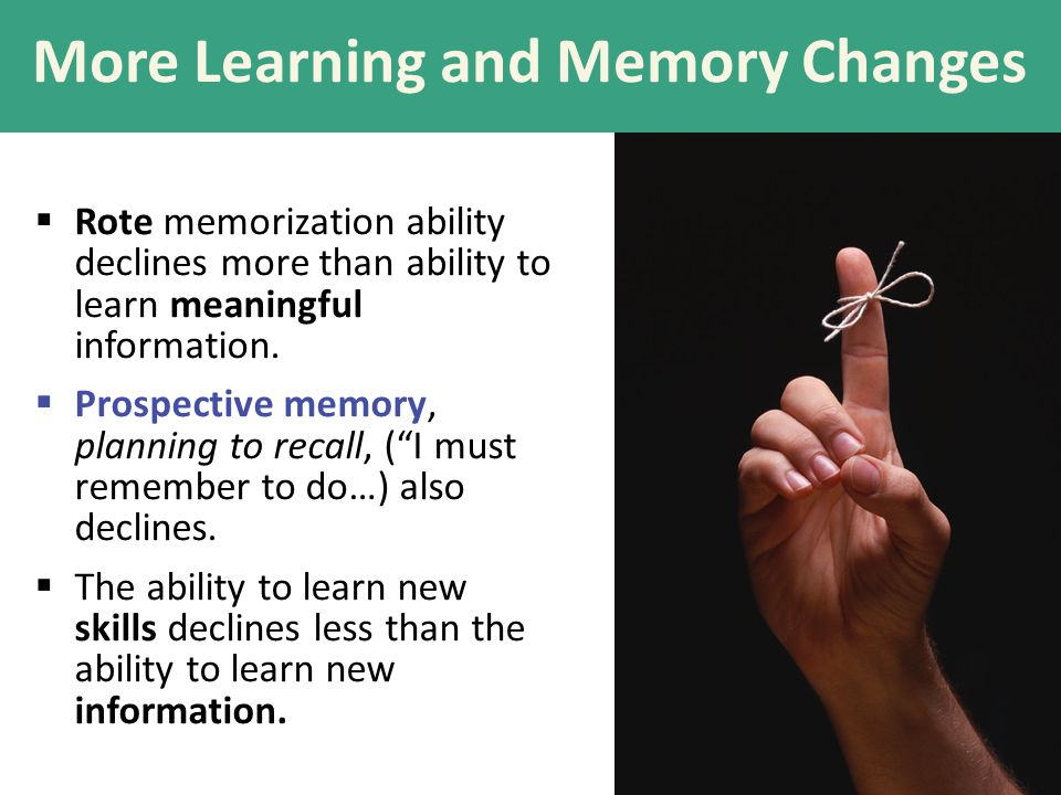 More Learning and Memory Changes