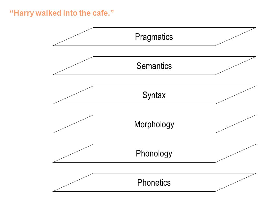 Pragmatics Semantics Syntax Morphology Phonology Phonetics