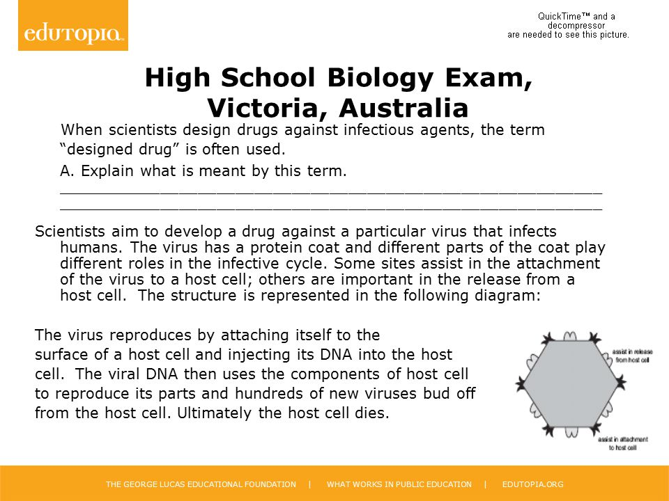 High School Biology Exam, Victoria, Australia