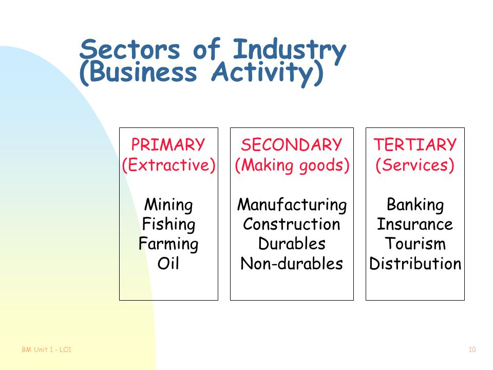Sectors of Industry (Business Activity)