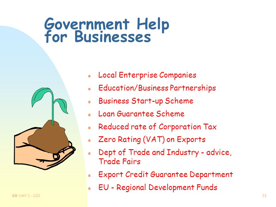 Government Help for Businesses