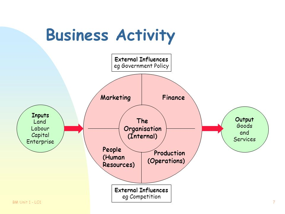 Business Activity Marketing Finance The Organisation (Internal) People