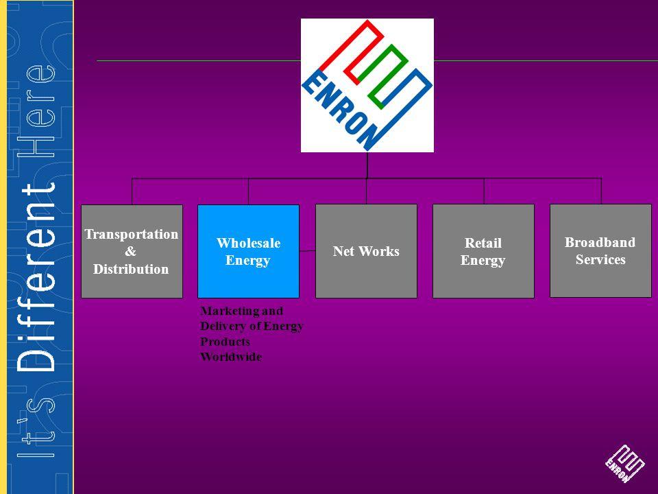 Transportation & Distribution Wholesale Energy Net Works Retail Energy