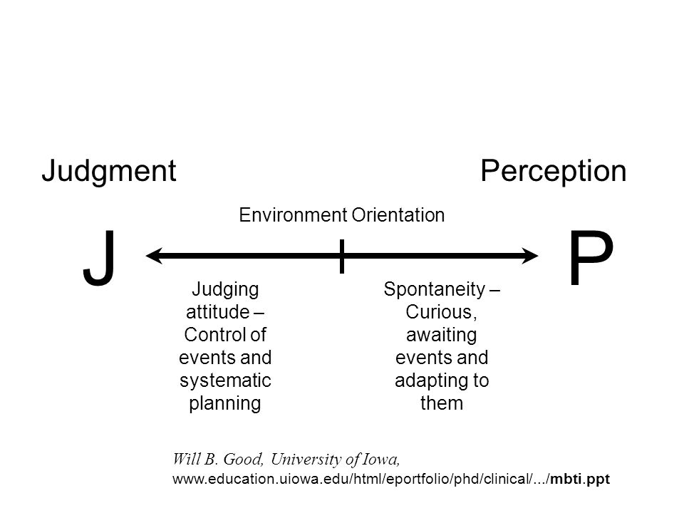 J P Judgment Perception Environment Orientation