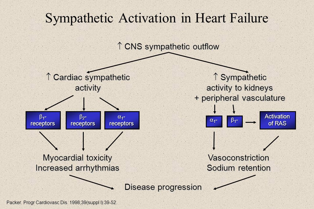 Sympathetic Activation in Heart Failure
