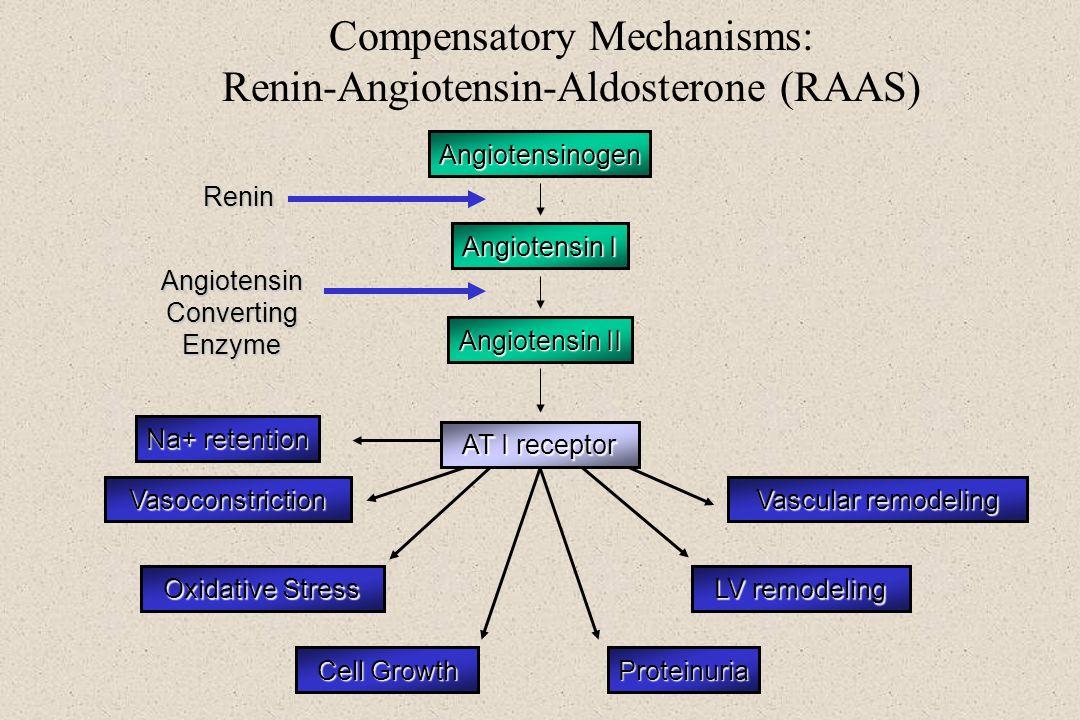 Compensatory Mechanisms: Renin-Angiotensin-Aldosterone (RAAS)