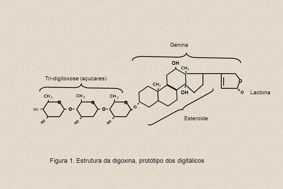 Figura 1. Estrutura da digoxina, protótipo dos digitálicos