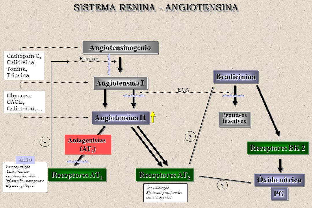 SISTEMA RENINA - ANGIOTENSINA