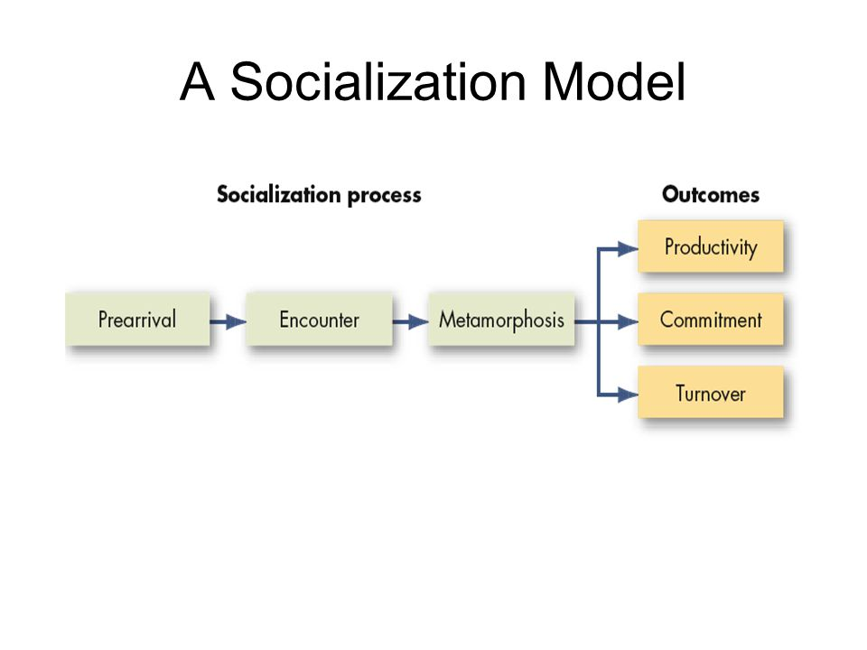 A Socialization Model