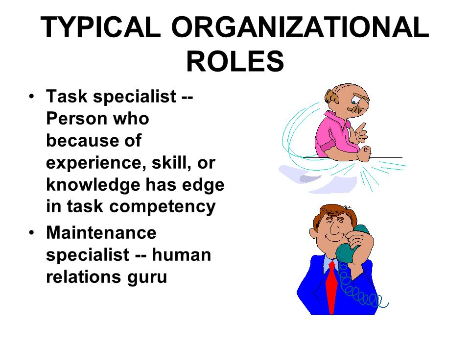 TYPICAL ORGANIZATIONAL ROLES