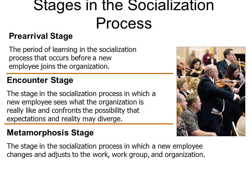 Stages in the Socialization Process