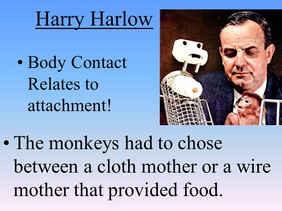 Harry Harlow Body Contact Relates to attachment.