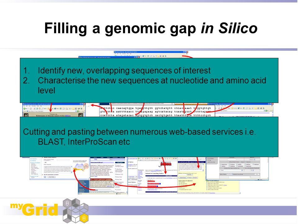 Filling a genomic gap in Silico