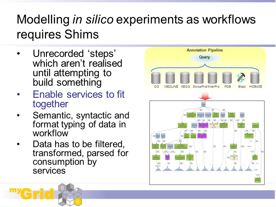 Modelling in silico experiments as workflows requires Shims