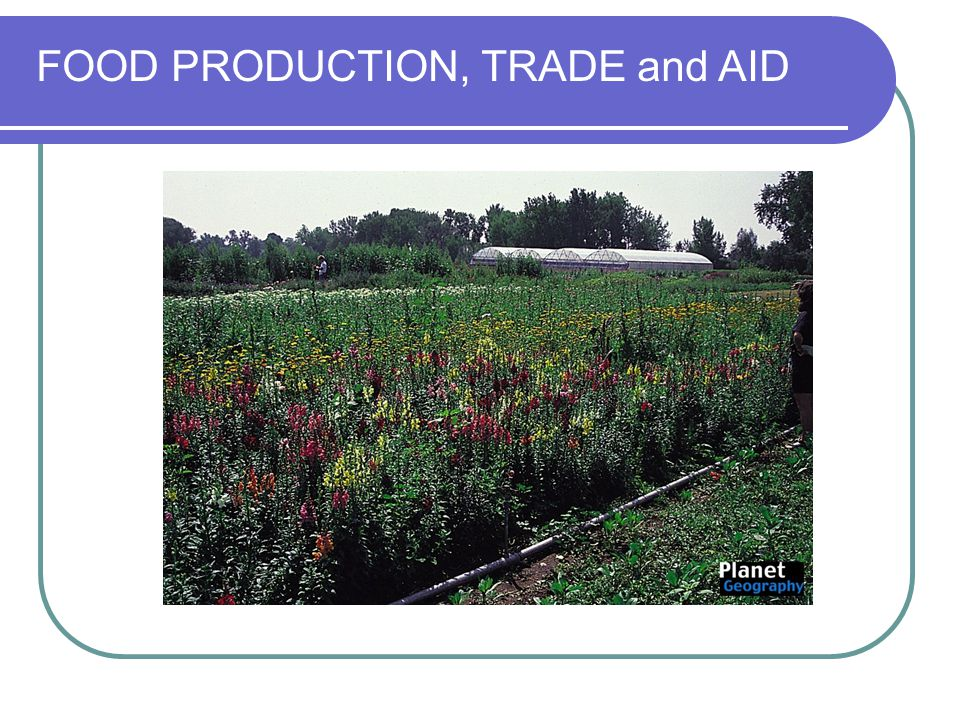 FOOD PRODUCTION, TRADE and AID