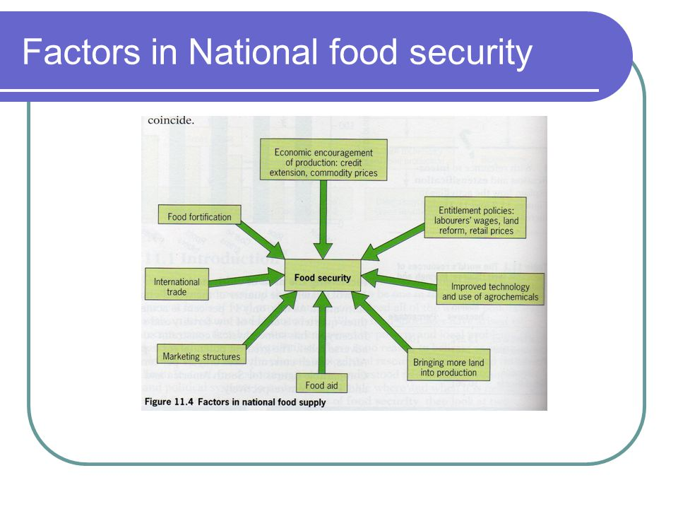 Factors in National food security
