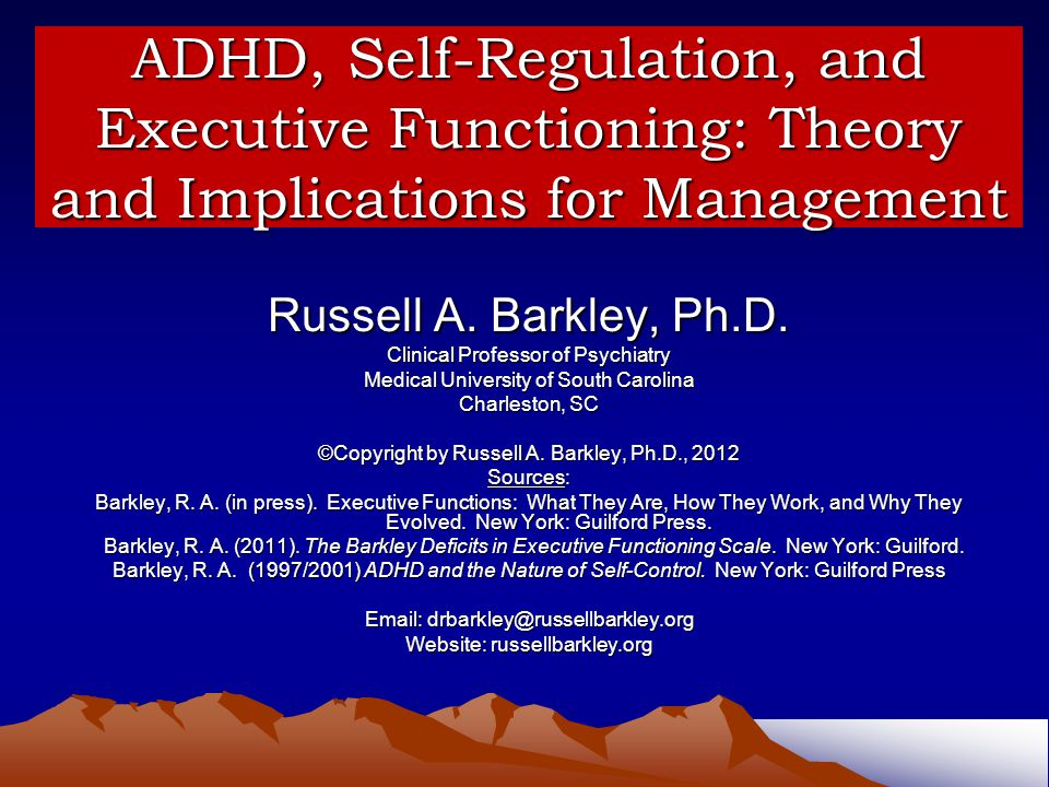 ADHD, Self-Regulation, and Executive Functioning: Theory and Implications for Management