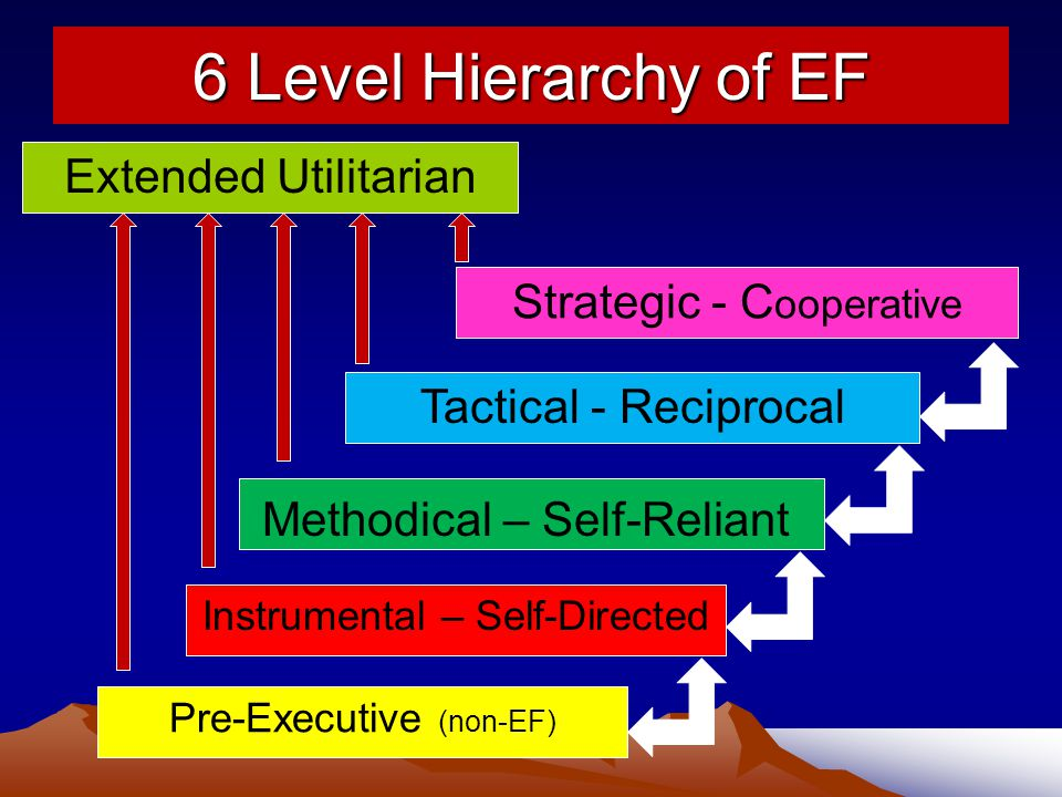 6 Level Hierarchy of EF Extended Utilitarian Strategic - Cooperative