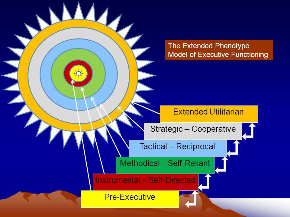 Strategic -- Cooperative