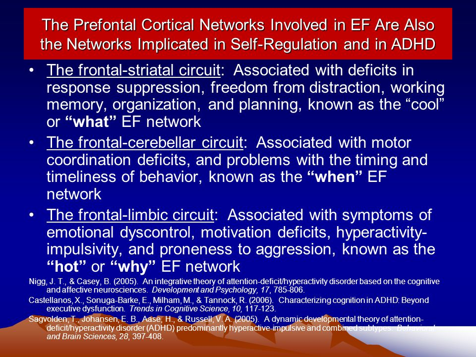 The Prefontal Cortical Networks Involved in EF Are Also the Networks Implicated in Self-Regulation and in ADHD