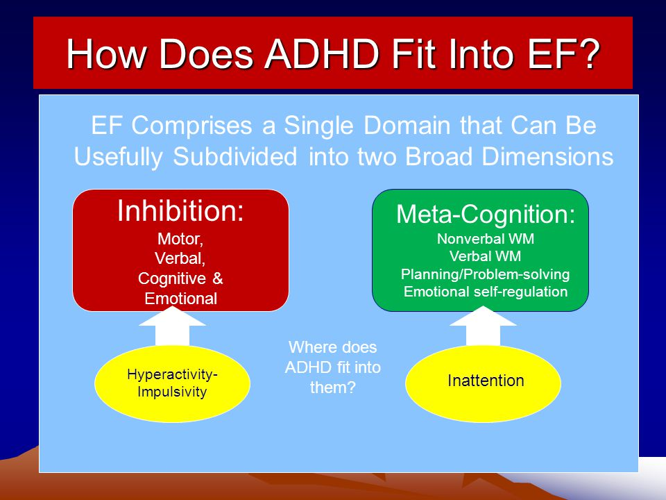 How Does ADHD Fit Into EF