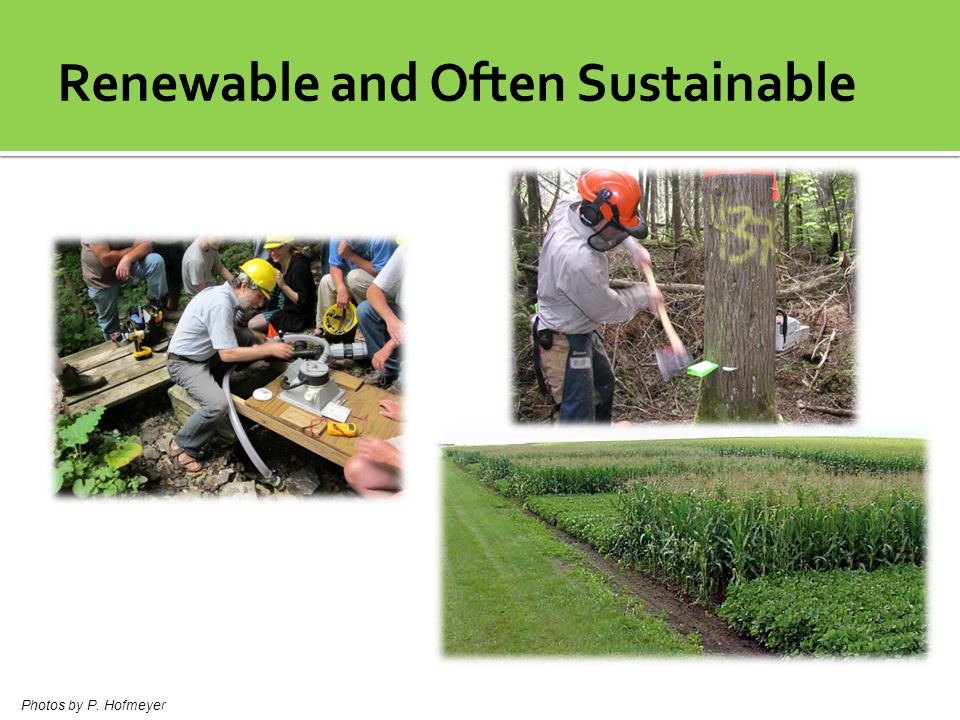 Renewable and Often Sustainable