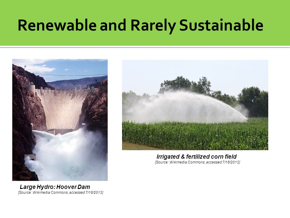 Renewable and Rarely Sustainable