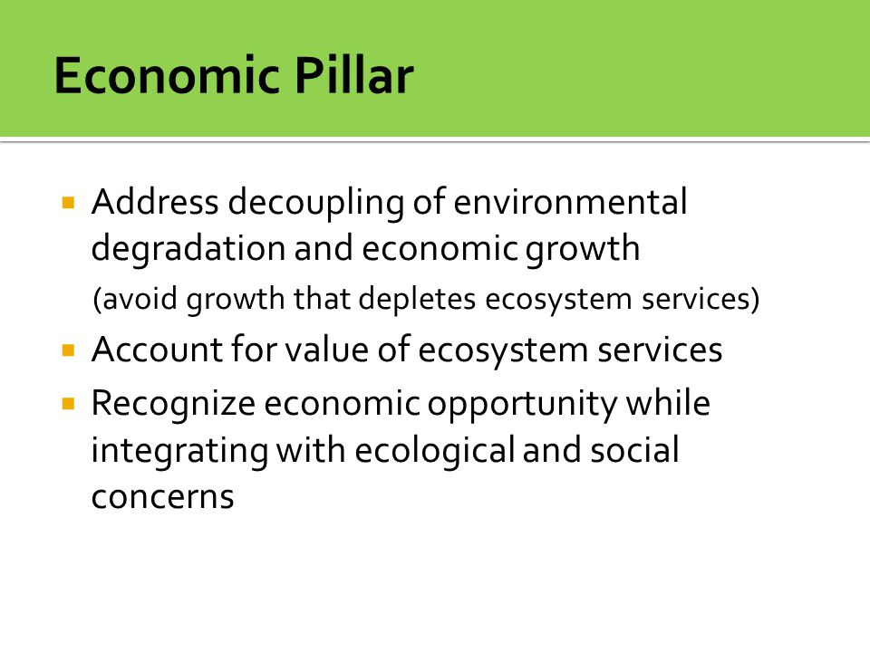 Economic Pillar Address decoupling of environmental degradation and economic growth. (avoid growth that depletes ecosystem services)