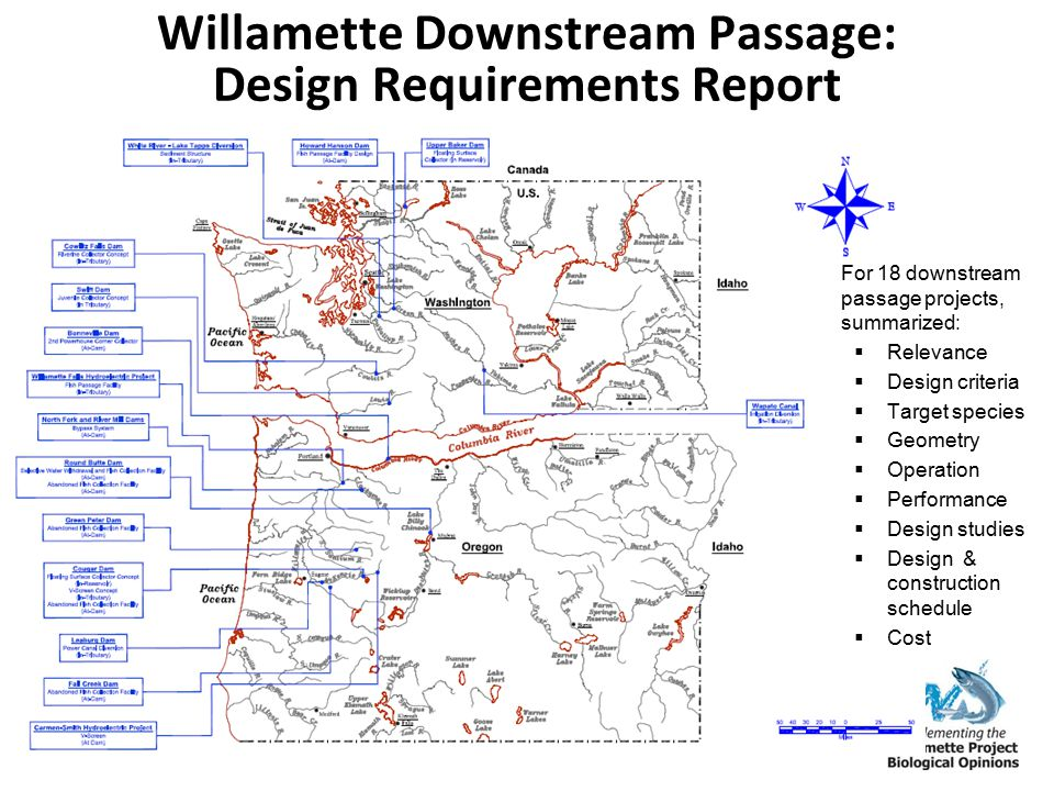 Willamette Downstream Passage: Design Requirements Report