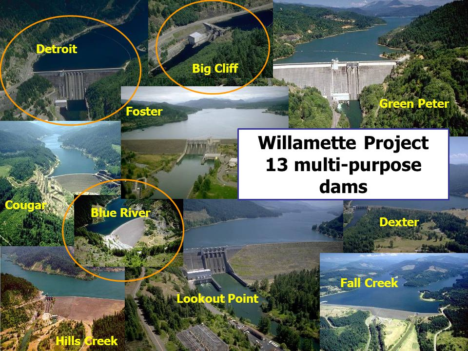 Willamette Project 13 multi-purpose dams