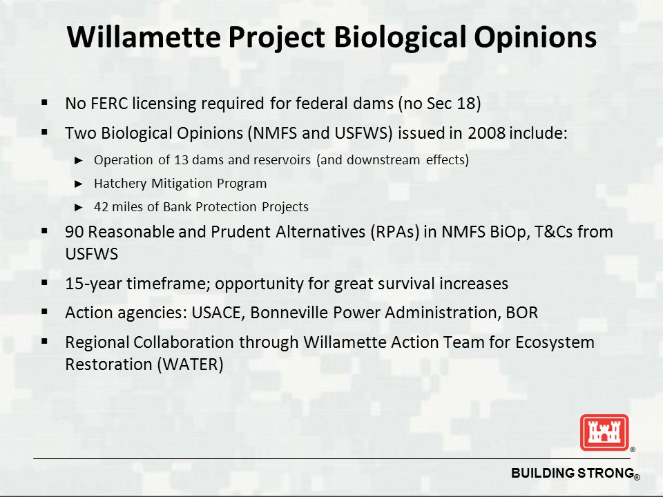 Willamette Project Biological Opinions