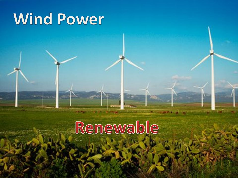 Wind Power Renewable