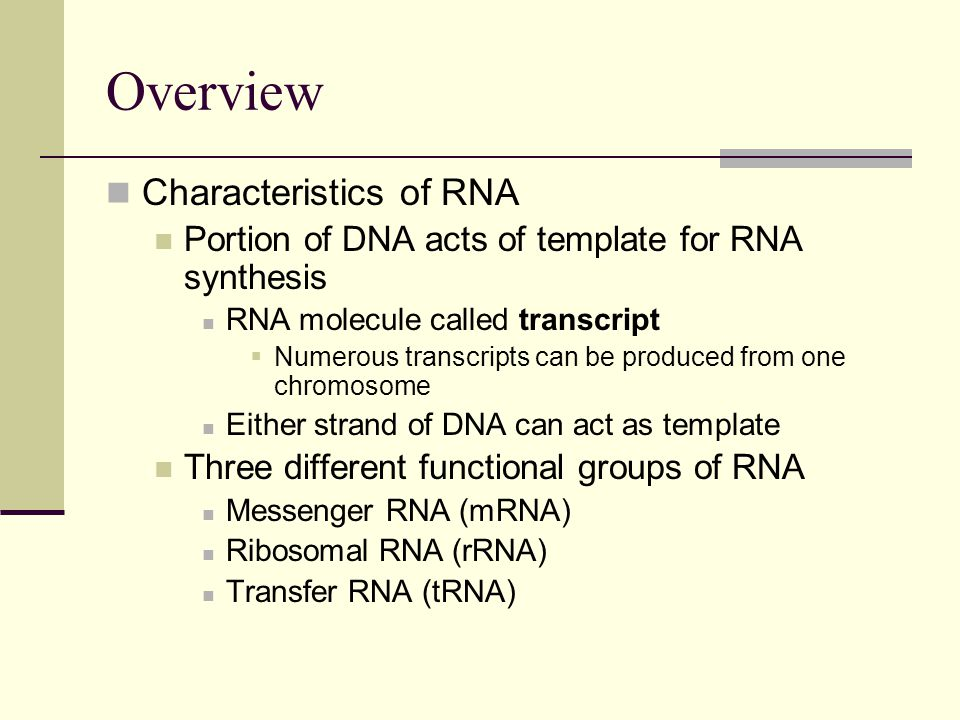 Overview Characteristics of RNA