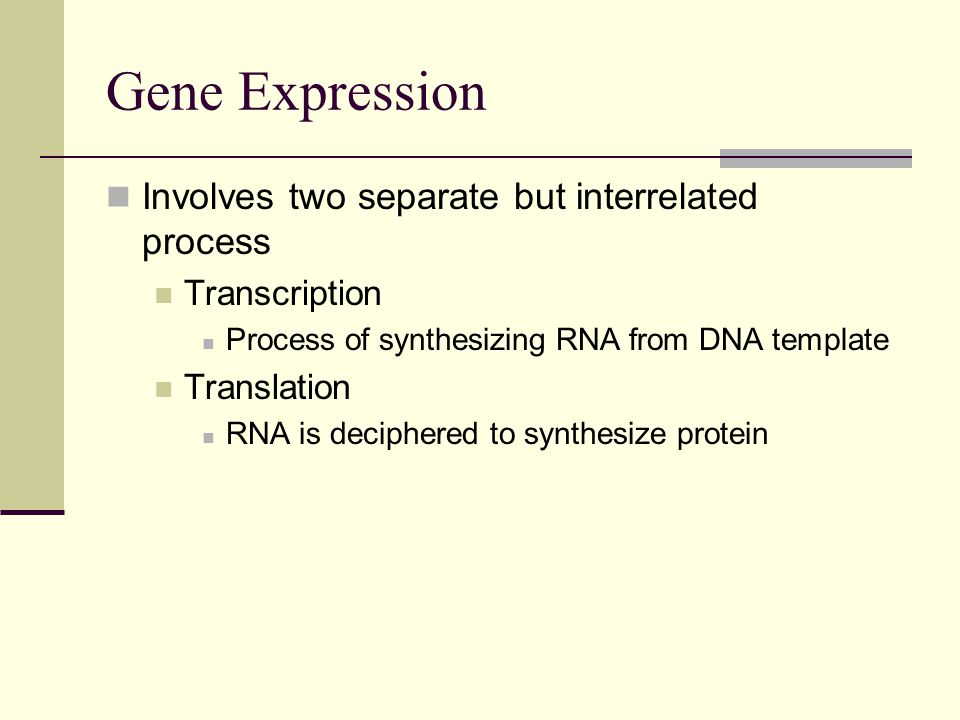 Gene Expression Involves two separate but interrelated process