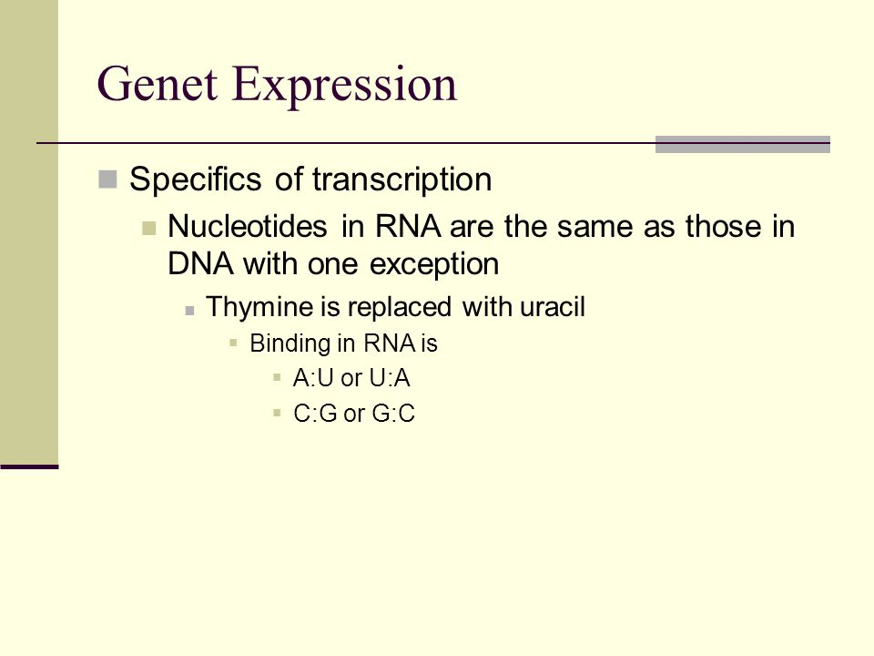 Genet Expression Specifics of transcription