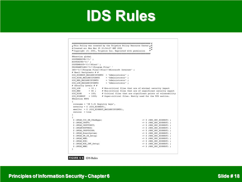 IDS Rules Principles of Information Security - Chapter 6
