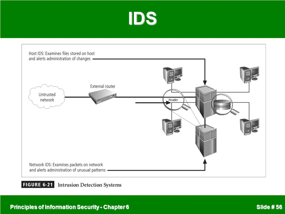 IDS Principles of Information Security - Chapter 6