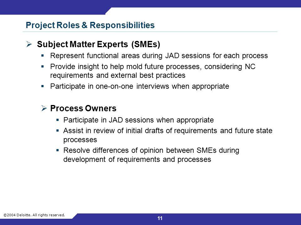 Project Roles & Responsibilities
