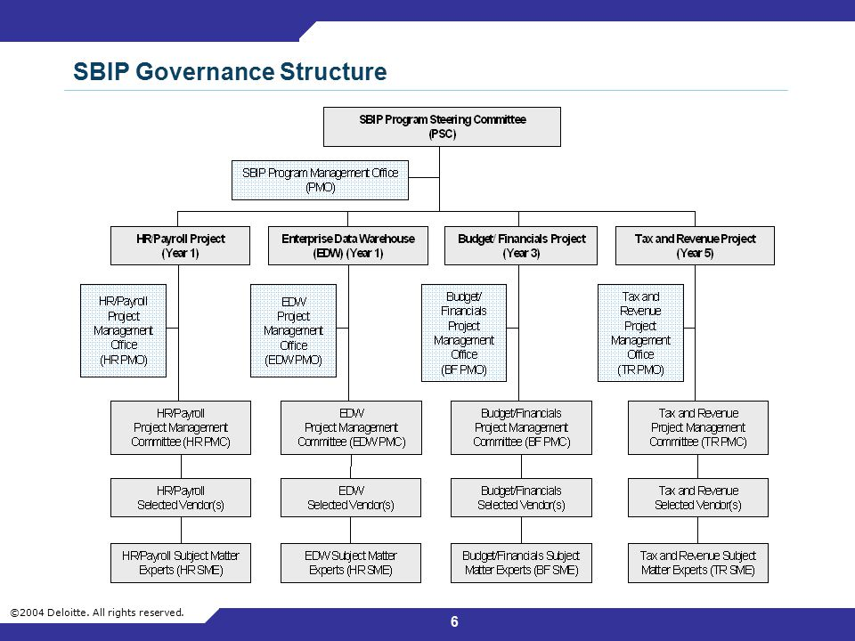 SBIP Governance Structure