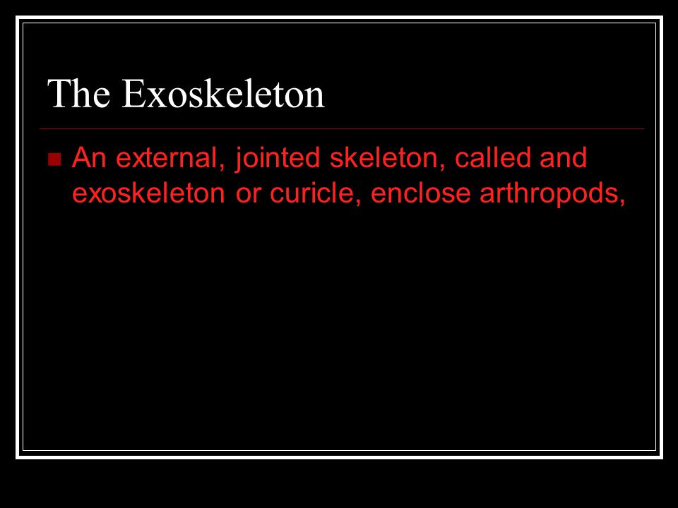 The Exoskeleton An external, jointed skeleton, called and exoskeleton or curicle, enclose arthropods,