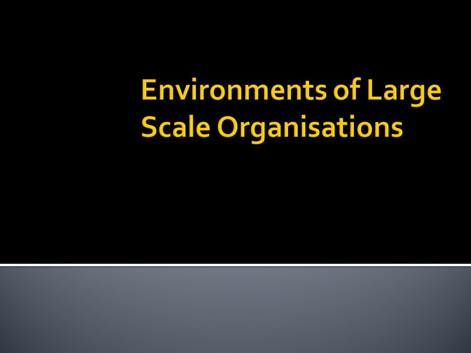 Environments of Large Scale Organisations